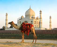 Tour Package In Rajasthan